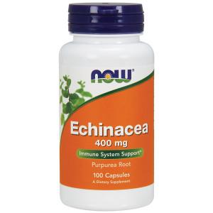 Echinacea Root 400mg (Purpurea)